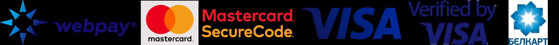 логотипы платежных сист__ (1).png